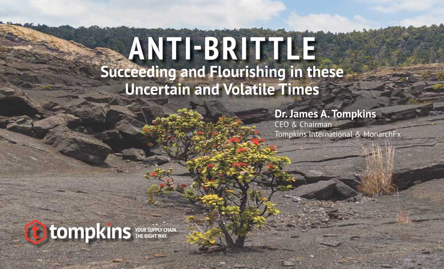 Anti-Brittle: Succeeding and Flourishing in these Uncertain and Volatile Times